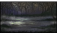 Swamp Background
