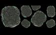 Asteroids Field