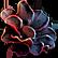 :Oblivion_Flower: