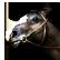 :horseshead:
