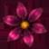 :dofsflower: