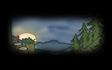 Pine Backdrop