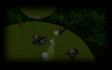Jungle Fight