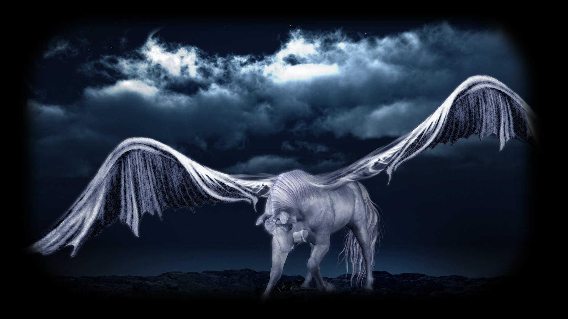 Pegasus in Service