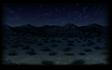 Nighttime Desert
