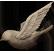 :ebird: