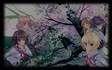 Sakura no Mori † Dreamers•chara5
