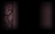pm5_bg01