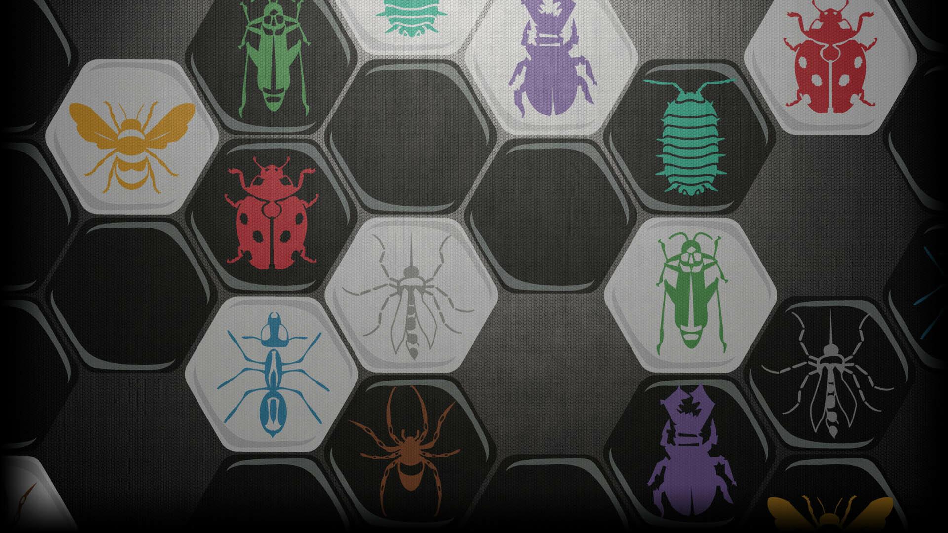 Showcase :: Hive