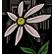 :blooming: