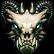 :dragonskull: