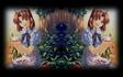 Double Lilia