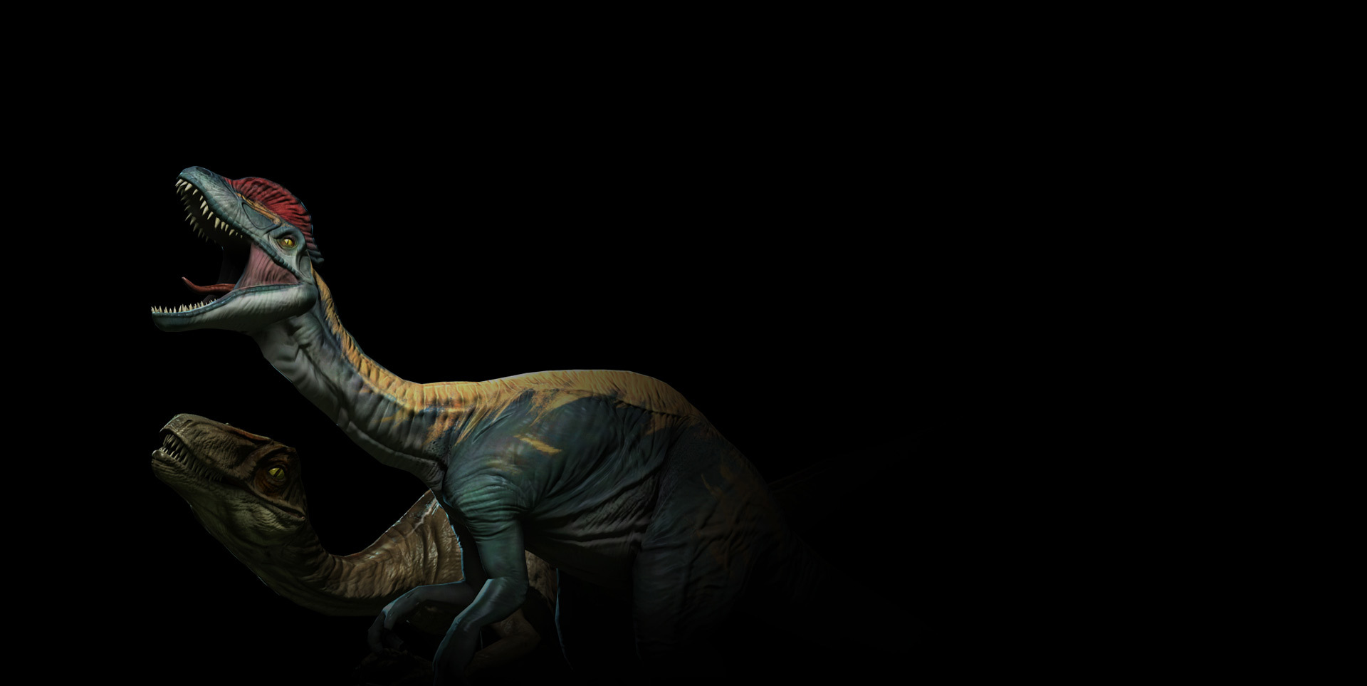 Dilophosaurus and Novaraptor