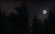 Zombie Moon