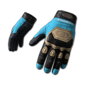 Ashek's Gloves