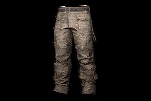 Biker Pants Gray