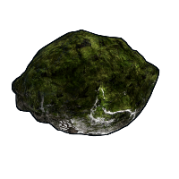 Mossy Fossil