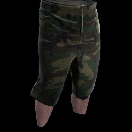 Camo Shorts as seen on a Steam Market