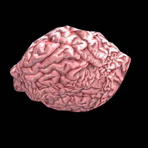 Fresh Brain as seen on a Steam Market