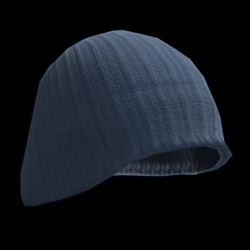 Blue Beenie Hat as seen on a Steam Market