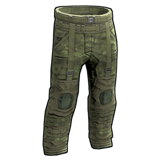 Forest Raiders Pants