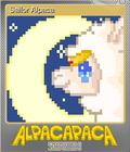 Sailor Alpaca