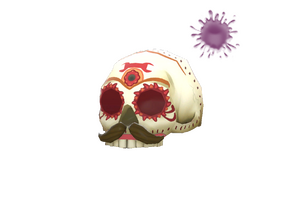 Strange Corpus Christi Cranium