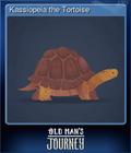 Kassiopeia the Tortoise