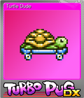 Turtle Dude