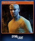 Showcase Dying Light