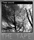 Trees around