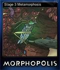 Stage 3 Metamorphosis