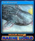 The Whaleshark