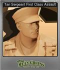 Tan Sergeant First Class Assault