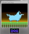Hover Lab Dog
