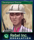 Development Director