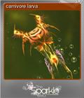 carnivore larva