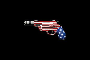 The Judge Shotgun Pocket Patriot Lightly Marked