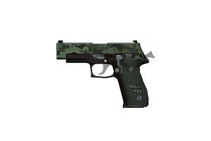 Signature 40 Pistol Ghurka Battle Worn