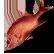 :fishalexia: