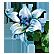:moonflower: