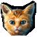 :gl_kitty: