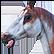 :painthorse: