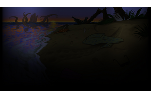 Beach Profile Background