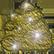 :goldendump:
