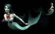 Desperate Mermaid