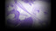 Primula (Profile Background)