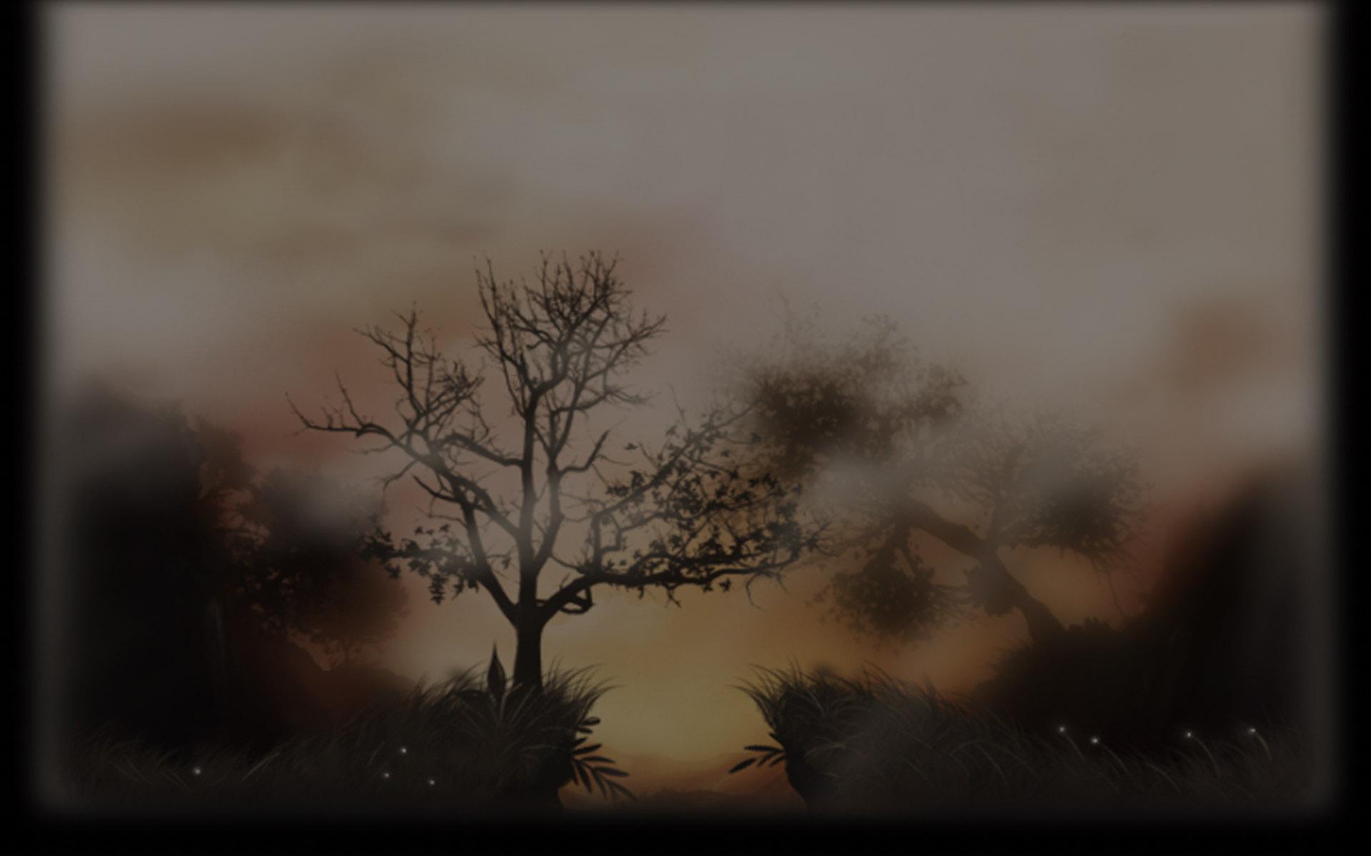 Beautiful Sunset (Profile Background)