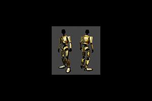 D A R C3hz Armor Precious