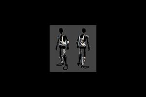 D A R Chonn E 5 Armor Gym